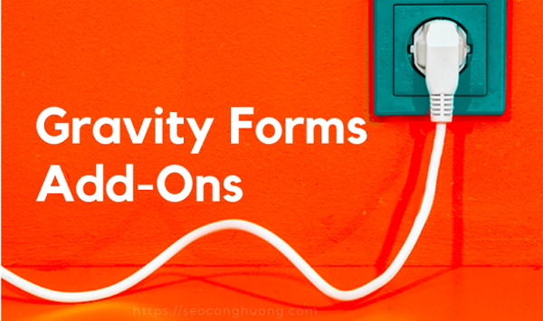 gravity-forms-add-ons